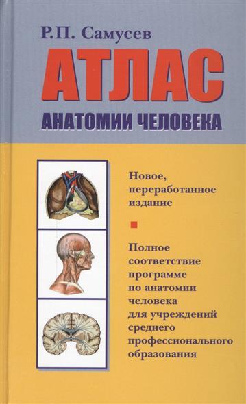 Самусев Р. Атлас анатомии человека анна спектор большой иллюстрированный атлас анатомии человека