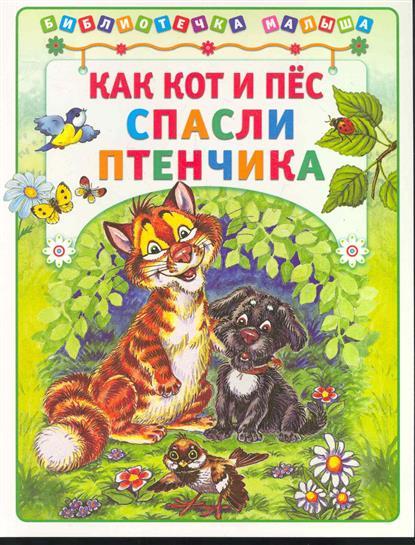 Деревянко Т.: Как кот и пес спасли птенчика