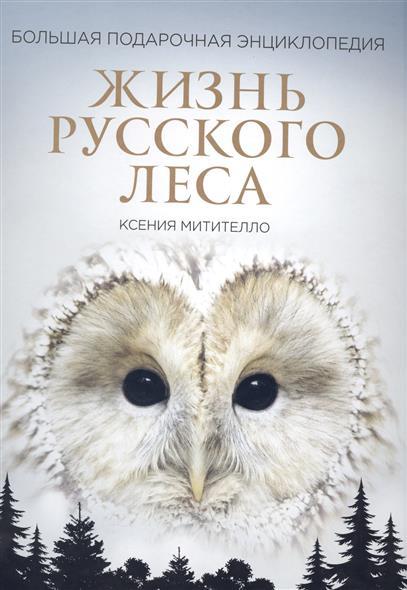 Ксения Митителло Жизнь русского леса. Большая подарочная энциклопедия