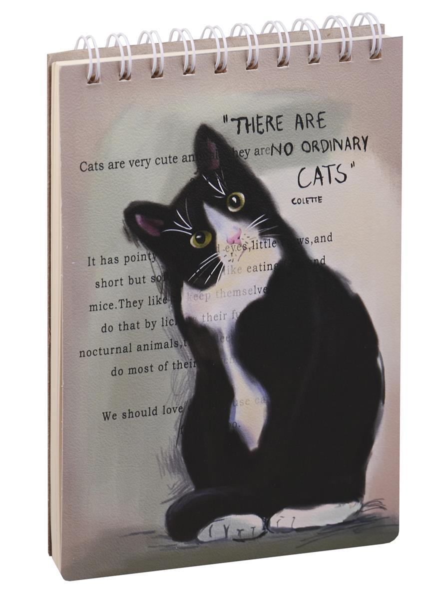"Скетчбук А5  ""Cats"", 100 листов"