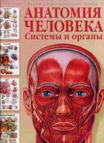 Анатомия человека Системы и органы анатомия человека русско латинский атлас