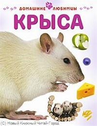 Рейнер М. Крыса ISBN: 9785944641830 рейнер м крыса