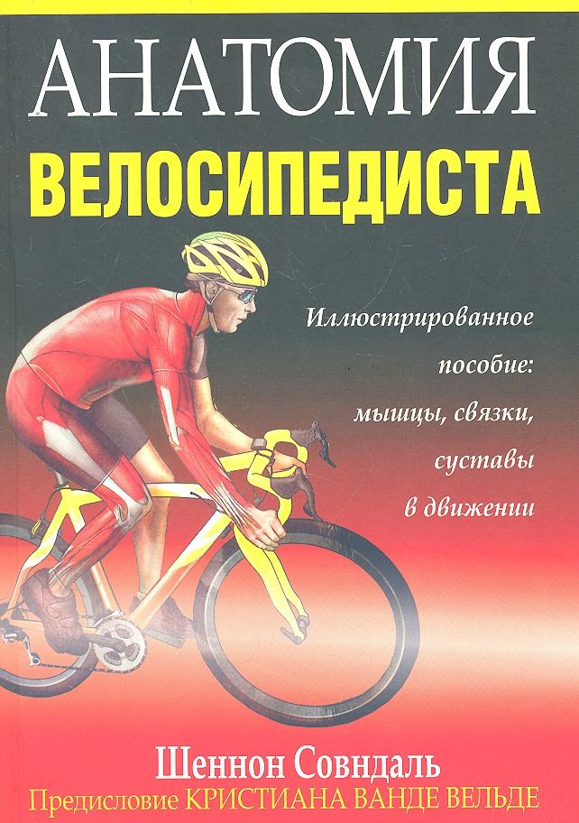 Совндаль Ш. Анатомия велосипедиста