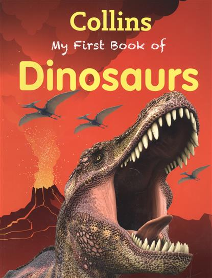 My First Book Of Dinosaurs my first dinosaur colouring book