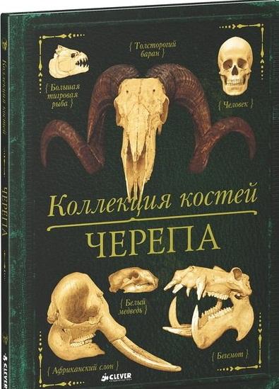 Бедуайер К. Коллекция костей. Черепа коллекция костей черепа бедуайер де ла к clever