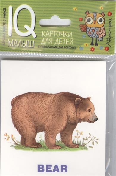 Умный малыш. Карточки для детей. Зоопарк / Zoo