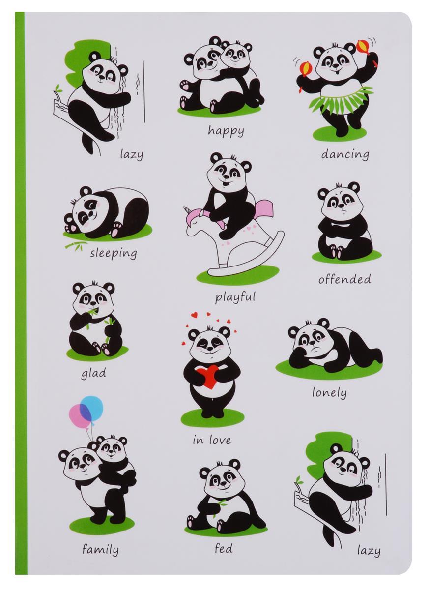 Блокнот Pandas life