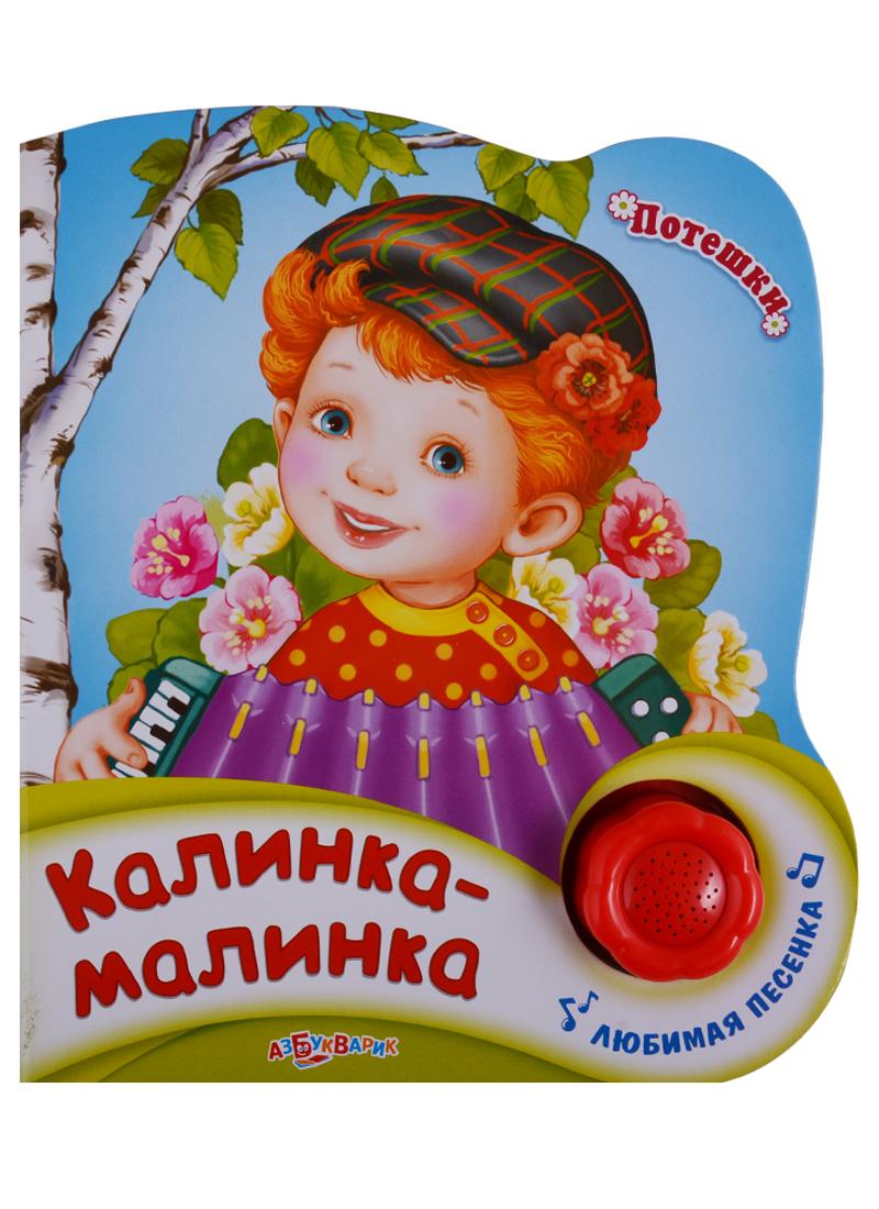 Булацкий С. Калинка-малинка. Любимая песенка россия 23280055080 розетка малинка 55 80