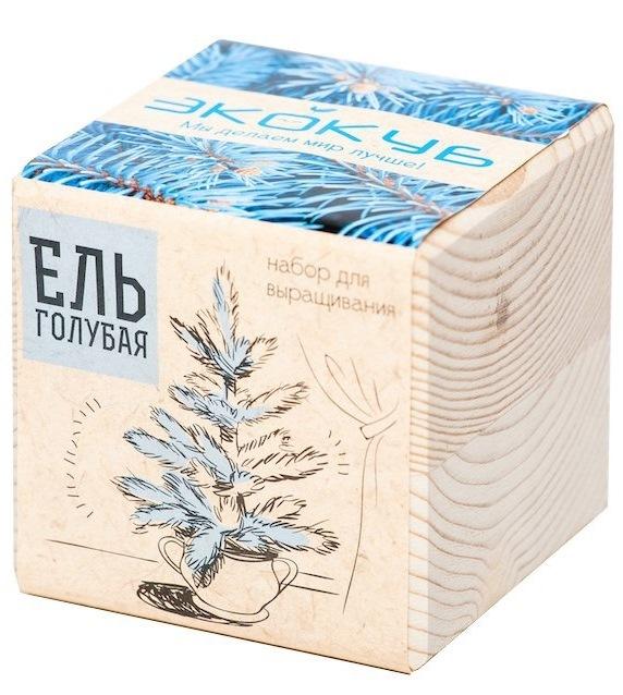 """Набор для выращивания """"Экокуб"""": Голубая ель"""
