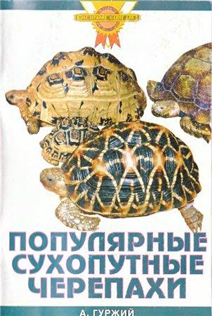 Гуржий А. Популярные сухопутные черепахи а гуржий офисный аквариум