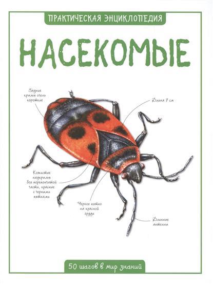Бедуайер К. Насекомые. 50 шагов в мир знаний камилла де ла бедуайер насекомые
