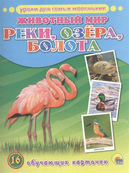 Животный мир. Реки, озера, болота. 16 обучающих карточек