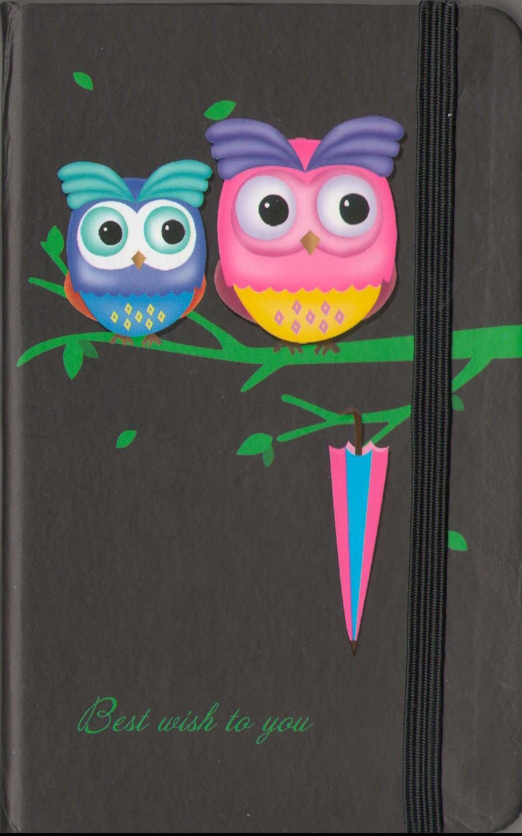 """Записная книжка А6 96л """"Совы. Owls"""" на резинке, ассорти"""