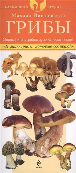 Вишневский М. Грибы. Определитель грибов русских лесов и полей. Данный определитель содержит описания и изображения 60 видов грибов, часто встречающихся в лесах, на полях и лугах в средней полосе России атлас грибов определитель видов