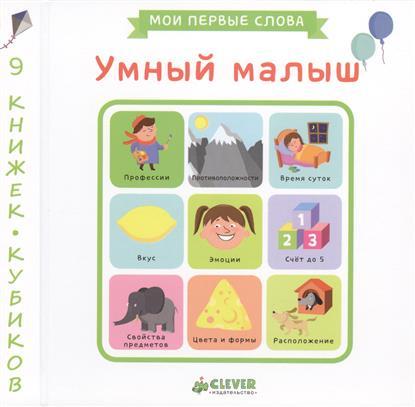Елькина Е., Жиренкина Е., Корчемкина Е. (худ.) Умный малыш. 9 книжек-кубиков