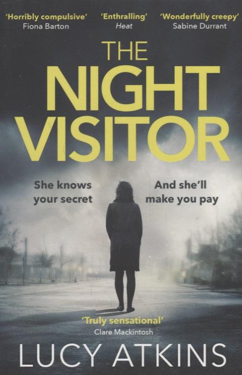 Atkins L. The Night Visitor child l night school