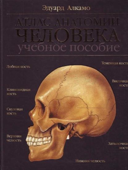 Атлас анатомии человека Алкамо