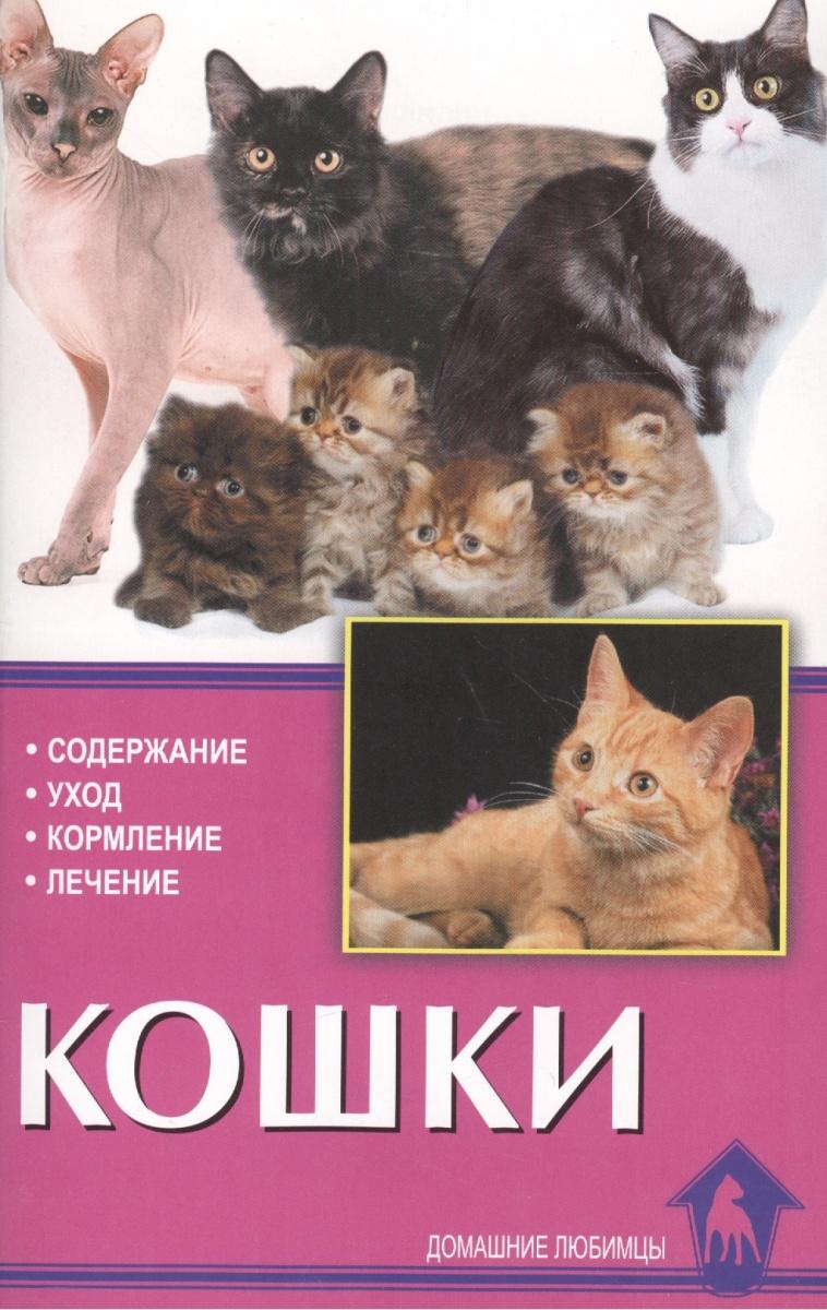 Кошки. Содержание, уход, кормление, лечение
