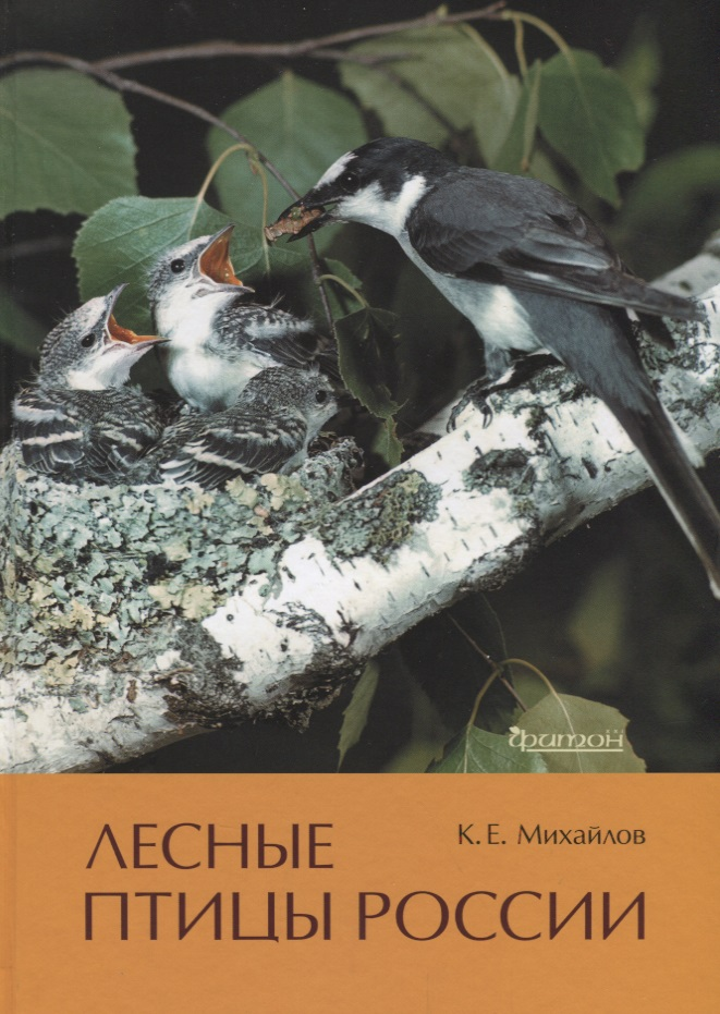 Лесные птицы России