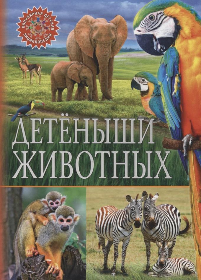 Феданова Ю., Скиба Т. (ред.) Детеныши животных детеныши животных наклейки