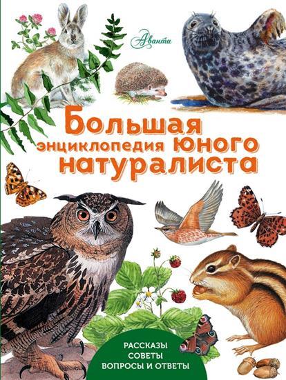 Волцит П. Большая энциклопедия юного натуралиста ISBN: 9785170935321 волцит п ред животные самая увлекательная энциклопедия для малышей