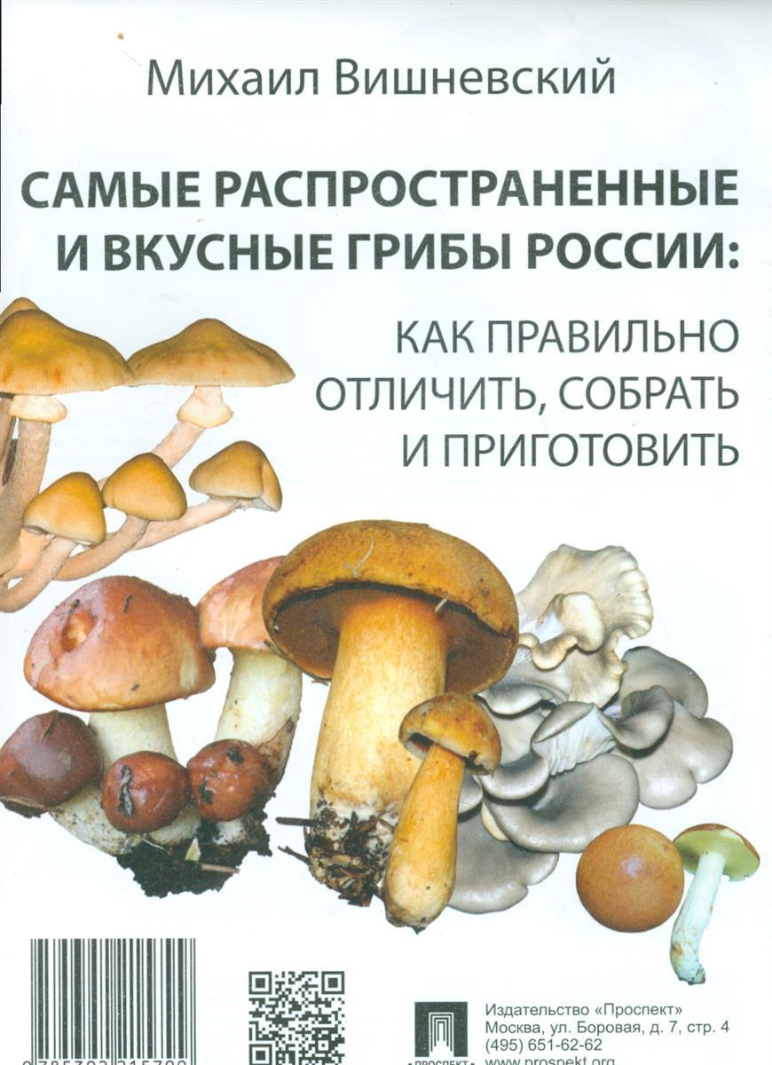 Вишневский М. Самые распространенные и вкусные грибы России: Как правильно отличить, собрать и приготовить