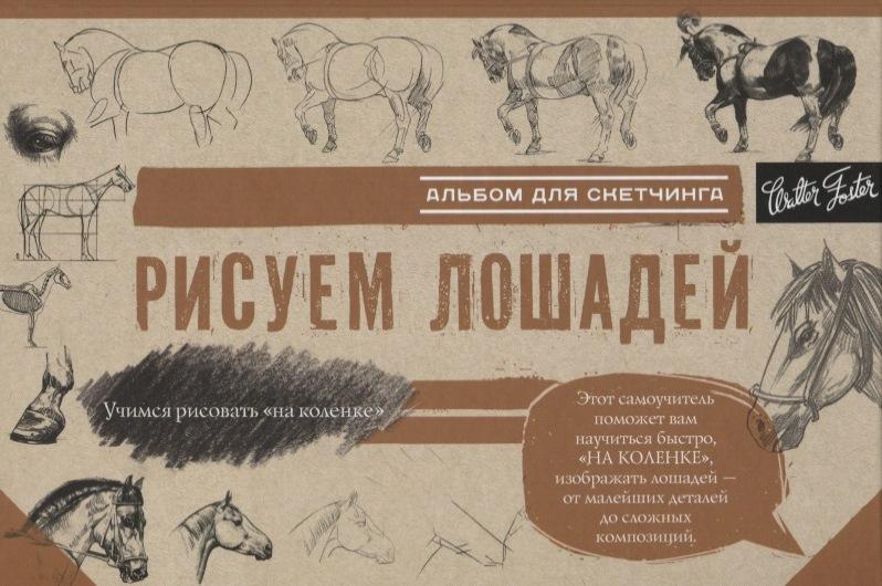 купить Чудова А. (ред.) Рисуем лошадей. Альбом для скетчинга по цене 194 рублей