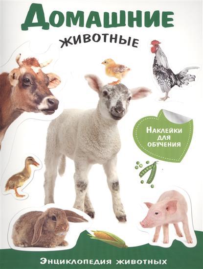 Позина Е. (ред.) Домашние животные. Энциклопедия животных с наклейками ISBN: 9785995121190