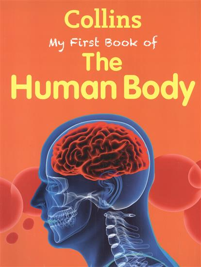 Green J. My First Book Of The Human Body big book of my world
