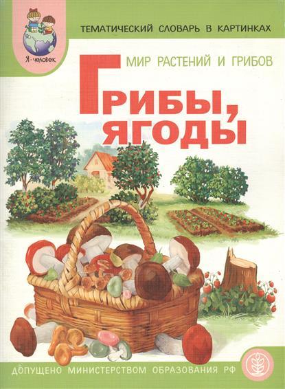 Мир растений Грибы ягоды