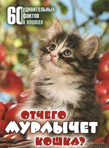 Отчего мурлычет кошка? 60 удивительных фактов о кошках