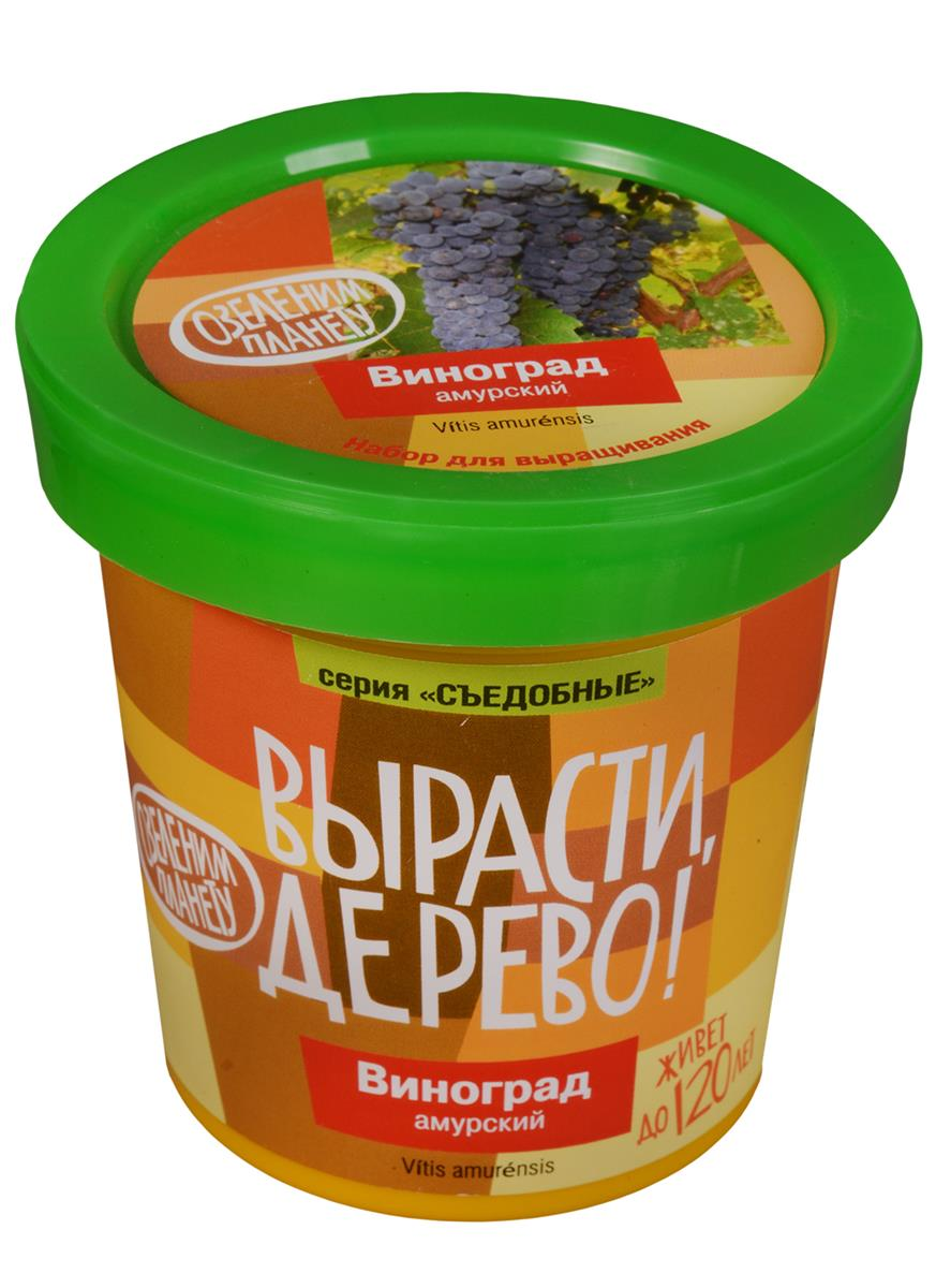 Набор для выращивания Виноград Амурский