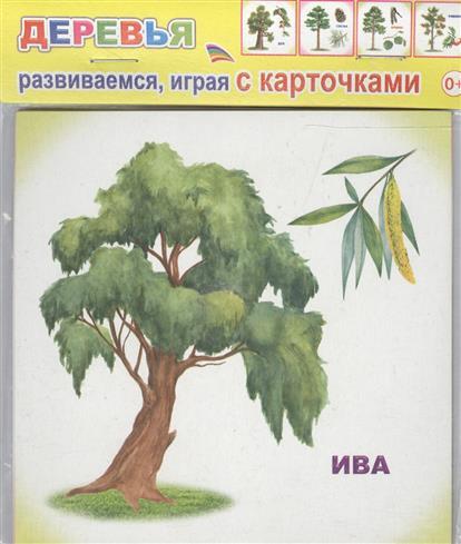 Обучающие карточки. Деревья кухонные весы oursson ks5009gd rd