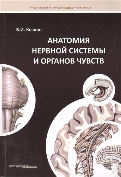Анатомия нервной системы и органов чувств. Учебное пособие