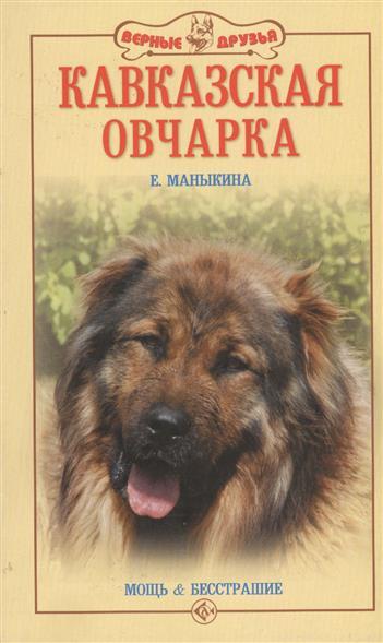 Кавказская овчарка Мощь и бесстрашие