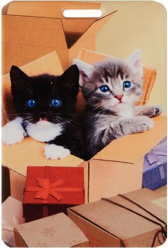 """Чехол для карточек """"Котята в коробке"""""""