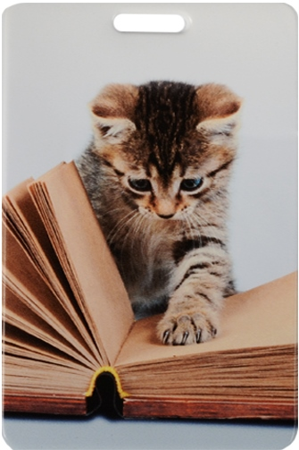 "Чехол для карточек ""Котенок читает книгу"""