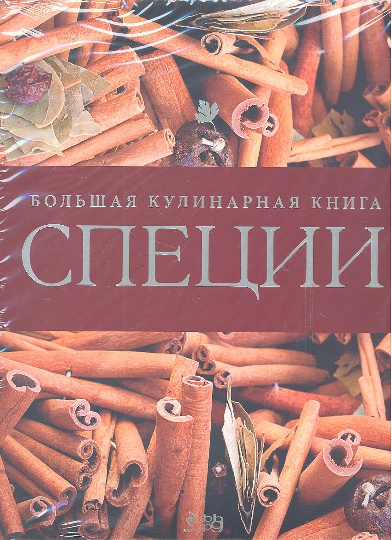 Текегалиева М. (пер.) Специи Большая кулинарная книга самокат большая кулинарная книга городка с 6 лет