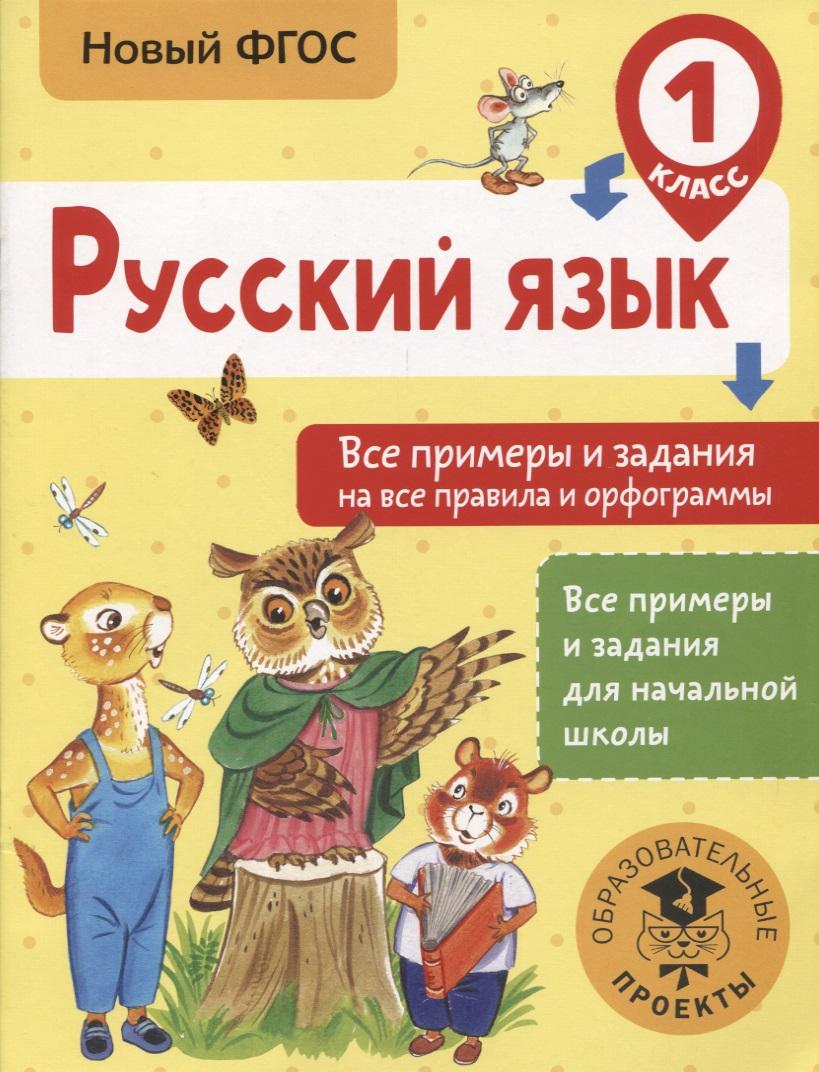 Русский язык. 1 класс. Все примеры и задания на все правила и орфограммы
