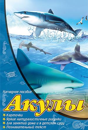 Акулы. Карточки. Яркие натуралистичные рисунки. Для занятий дома и в детском саду. Познавательный текст