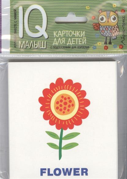 Растения. Plants. Карточки для детей с подсказками для взрослых (на англ.)