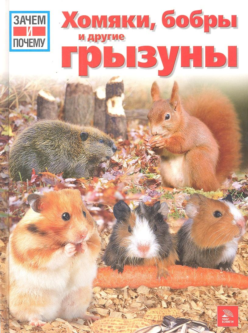 Штегхаус-Ковач С. Хомяки бобры и другие грызуны