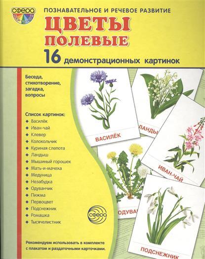 Цветы полевые. 16 демонстрационных картинок