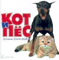 Кот и пес Лучшие фотографии