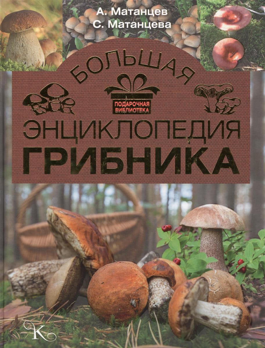 Большая энциклопедия грибника