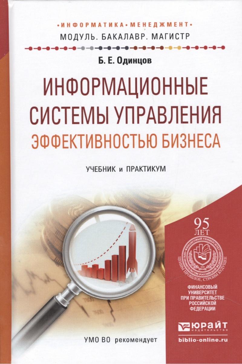 Информационные системы управления эффективностью бизнеса. Учебник и практикум для бакалавриата и магистратуры