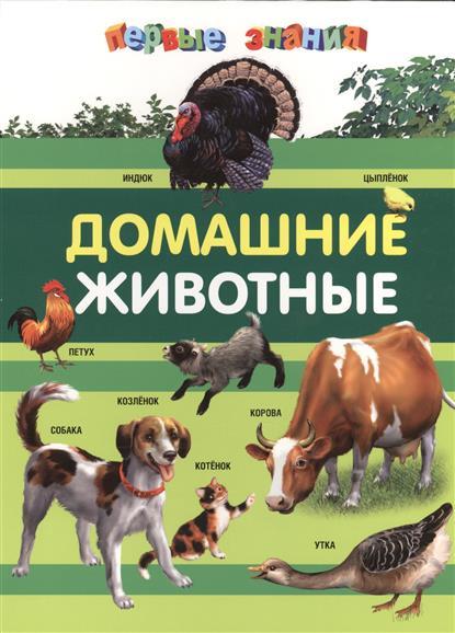 Тарасик Д. Домашние животные
