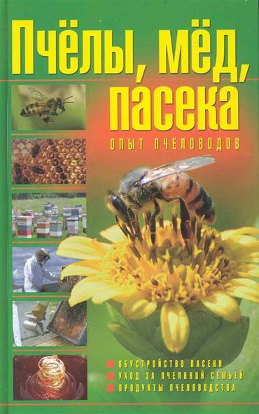 Пчелы мед пасека Опыт пчеловодов