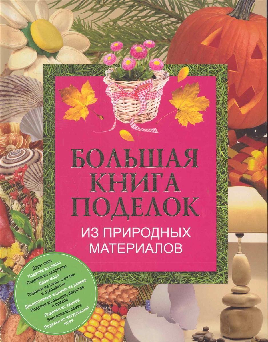 Чебаева С. Большая книга поделок из природных материалов