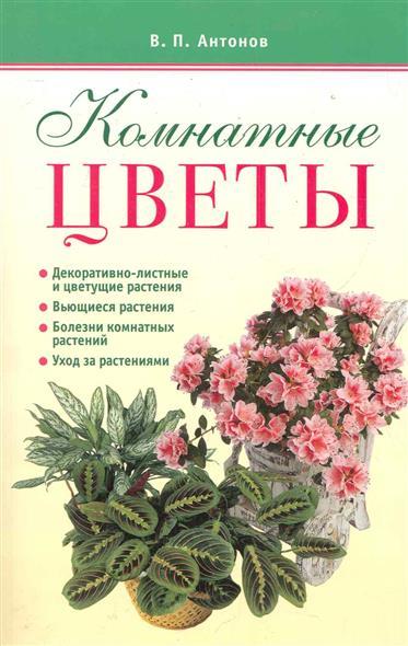 Антонов В. Комнатные цветы комнатные цветы в горшках купить в воронеже